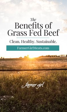 Everything you need to know about the benefits of Grass Fed Beef. Learn what makes it healthy, sustainable, and a better choice than conventional grain-fed beef.