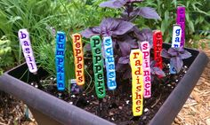Handmade garden stakes/plant markers.