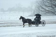 Snow • Lancaster, PA