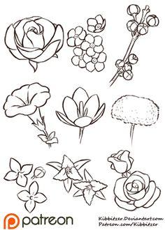 Flowers Reference Sheet by Kibbitzer.deviantart.com on @DeviantArt