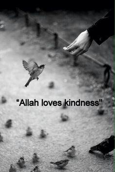 Allah loves kindness. Teach children to love what Allah loves :)