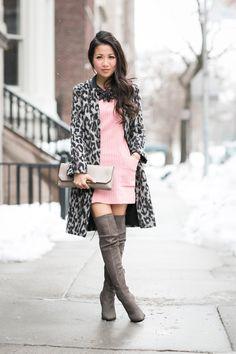 Snow Leopard :: Rose dress & Grey tall boots