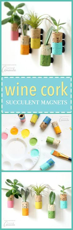 These wine cork succ