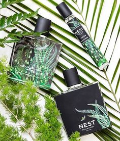 NEST Verde Eau de Parfum Based on a blend of wild fern and Himalayan cedar in an invigorating balance with verbena leaves and vetiver Beauty Art, Beauty Skin, Beauty Hacks, Beauty Tips, Beauty Products, Glossier You, Cosmetics & Perfume, Sephora, Bath And Body