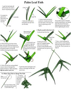 palm frond art -how to do it