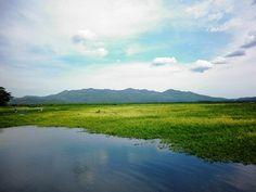 """Laguna El Jocotal - San Miguel """"es un humedal con 500 manzanas de extensión que gracias a su diversidad en aves y demás seres vivos, fue declarado en el año de 1996 como un sitio Ramsar"""""""