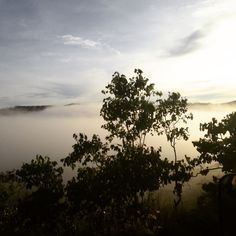 Low Cloud in the mountains East Timor (Timor-Leste)