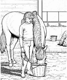 This coloring page for kids features a young girl feeding a horse from a bucket.