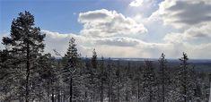 TURISTINA OMALLA SEUDULLA PART III – KOHTEENA ROKUA | Ulla Anttila | Pulse | LinkedIn Winter Sky, Good Company, Wonderful Time, How To Introduce Yourself, Skiing, Environment, Marvel, Mountains, Nature