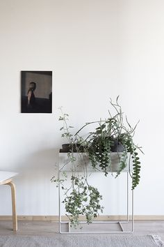 From Ferm Living, this timeless piece is designed as a stunning planter or beautiful storage solution for all living spaces. Made of Powder coated metal Dimensions: W x H x D x 65 Interior Plants, Interior And Exterior, Ficus Lyrata, Interior Design Minimalist, Minimalist Decor, Balkon Design, Plant Box, Small Space Gardening, Green Plants