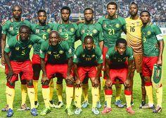 Selección de Camerún copa mundial de Brasil 2014