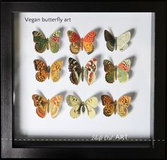DIY vegan butterfly framed art tutorial from Shift Ctrl ART - also has links to the place to get these free printable images & THOUSANDS more botanical & natural art images - this resource is amazing!