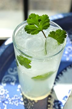 Coconut Ginger & Cilantro Cocktail  3 sprigs cilantro  3 lime wedges  2 ounces coconut rum  4 ounces ginger beer