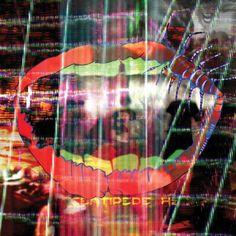 Centipede Hz ~ Animal Collective