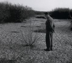 Derek Jarman, 1992. In the garden that DJ laid out in his later years, a exercise in natural sculpture that harmonises the bleak surroundings with the tenderness of home.