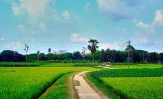 Výsledek obrázku pro beautiful bangladesh images
