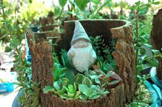 one of my miniature gardens for the Boeremark Miniature Gardens, Pta, Fun Things, Garden Sculpture, Stuff To Do, Miniatures, Create, Outdoor Decor, Home Decor