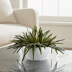 The sculptural beauty of desert succulents, realistically handcrafted for year-round use. Each faux plant is potted in a textured terra cotta container.