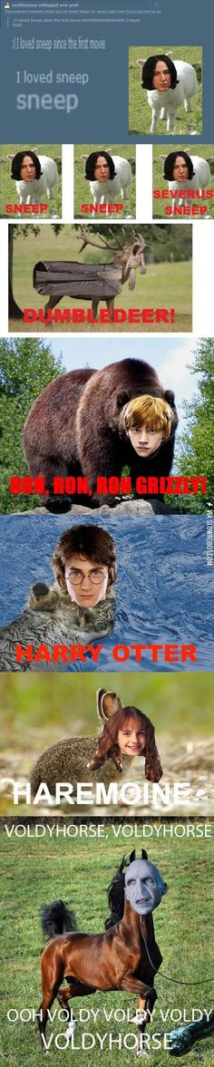 Funny pictures about Potter Animal Pals. Oh, and cool pics about Potter Animal Pals. Also, Potter Animal Pals. Humour Harry Potter, Mundo Harry Potter, Harry Potter Fandom, Sherlock Fandom, Harry Potter Stuff, Fandoms, Jarry Potter, Potter Puppet Pals, Yer A Wizard Harry
