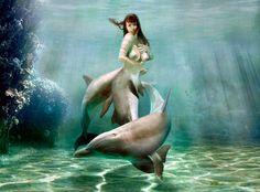 Mermaid Princess dolphin v2 by FueledbypartII.deviantart.com on @DeviantArt
