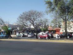 Enrique Ladrón de Guevera. Paseos del Sol , Zapopan, Jalisco México. Usos de suelo