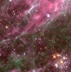 Hodge 301, seen in the lower right hand corner of this image, lives inside the Tarantula Nebula in our galactic neighbor, the Large Magellanic Cloud.