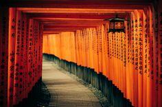 Los portales rojos del templo Fushimi Inari-taisha  Si vas Kioto tienes una visita obligada al templo sintoísta Fushimi Inari-taisha, donde se encuentra este famoso camino de torii oarco tradicional que marca la frontera entre el espacio profano y el sagrado.