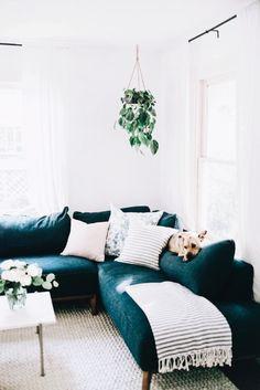 Contemporary living room design with navy mid-century sectional hanging plants and marble coffee table. After: Austin home tour by branding and web designer for lifestyle brands Cozy Living Rooms, Home Living Room, Living Room Decor, Blue Couch Living Room, Living Room Inspiration, Home Decor Inspiration, Decor Ideas, Decorating Ideas, Design Inspiration