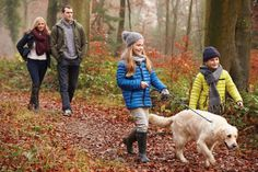 Lack of Bonding Dog Potty Training: 5 Common Potty Training Problems Local Hiking Trails, Parks, Charlevoix, Forest Bathing, Dog Walking, Dog Owners, Dog Friends, Hygge, How To Fall Asleep