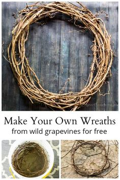 How to Make a Wild Grapevine Wreath : Learn how to make your own grapevine wrea. : How to Make a Wild Grapevine Wreath : Learn how to make your own grapevine wreaths by using the wild vines from the garden. Stick Wreath, Greenery Wreath, Wreath Crafts, Grapevine Wreath, Make Your Own Wreath, How To Make Wreaths, Wreath Forms, Wreath Tutorial, Nature Crafts