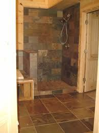 Brilliant Bathroom Ideas Using Doorless Shower Designs: Shower ...