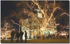 Holiday Tree Lightings and Festivals - Today's Mama Holiday Lights, Holiday Tree, Christmas Lights, Christmas Tree, Denton Square, Denton Texas, Sight & Sound, Tree Lighting, Main Street