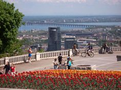 Mount Royal is a hill in the city of Montreal, immediately west of downtown Montreal, Quebec, Canada, the city to which it gave its name. Mont Royal Montreal, Montreal Ville, Montreal Quebec, Quebec City, Westminster, Voyage Canada, Capital Of Canada, Old Quebec, Royal Park