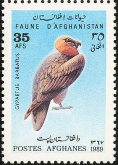 bearded vulture on stamps - Google zoeken