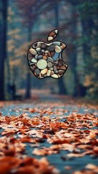 iPhone 7 Wallpapers Autumn-Rocks