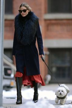 Stylish dogs and their owners…