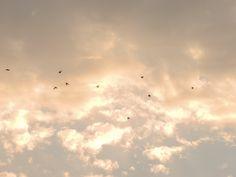 Sky, Céu, Nuvem