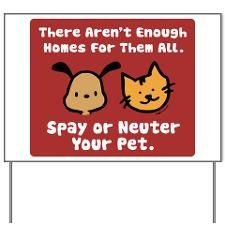 Please be a responsible pet owner!