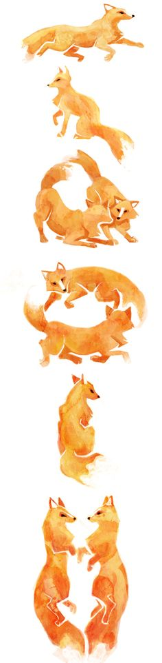 Cute illustrations...now what would these look like as penguins?? Foxes for a Wedding by Melissa Doskotz, via Behance