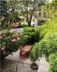 A garden in the city