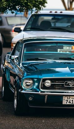 1967 Ford Mustang | Source #mustangclassiccars