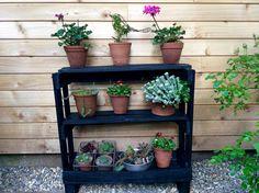Pallet Plant Shelf, recycling project