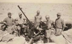 German/Italian mixed gun team - North Africa, pin by Paolo Marzioli