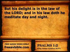 #19. Psalms Chapter 1 King James Version KJV N2 – Free Audio Video Bible...