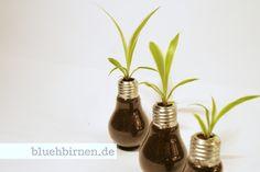 Blühbirne+-+mit+Lilie+auf+Ring+von+bluehbirnen.de+auf+DaWanda.com