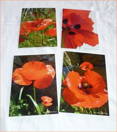 """Lot de 4 cartes postales 10x14cm avec des photos de coquelicots""""Coquelicots"""" : Cartes par celinephotosartnature Nature, Photos, Painting, Etsy, Poppies, Handmade Gifts, Cards, Naturaleza, Painting Art"""