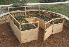 BuildDirect – Lawn & Garden - Wooden Garden Beds – 8' x 8' Raised Cedar Garden Bed - Outdoor View