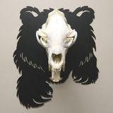Bear Front with Skull Euro Mounts, Bear Skull, Bow Hanger, Bear Hunting, Skull Decor, Bear Art, Brushed Stainless Steel, Taxidermy, Black Bear