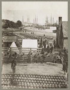 Yorktown, Va., May 1862. A scene during the Civil War