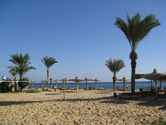 Gulf of Aqaba, where the archaeological team go for a day off.